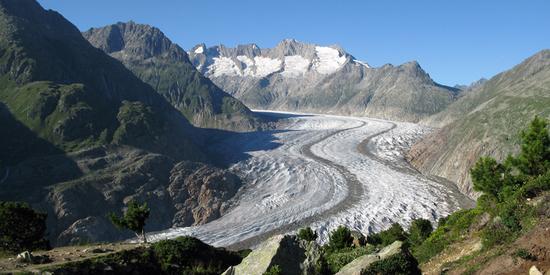 Der Aletschgletscher ist der größte Gletscher der Alpen.