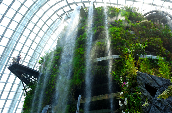"""Im """"Cloud Forest"""": Wasserfall und Nebel schaffen eine ideale Lebensbedingungen für Pflanzen aus tropischen Klimawelten."""