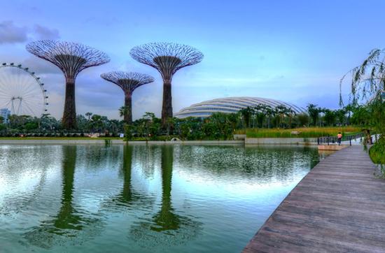 Die Gardens by the Bay - eine faszinierende Synergie aus Architektur und Natur.
